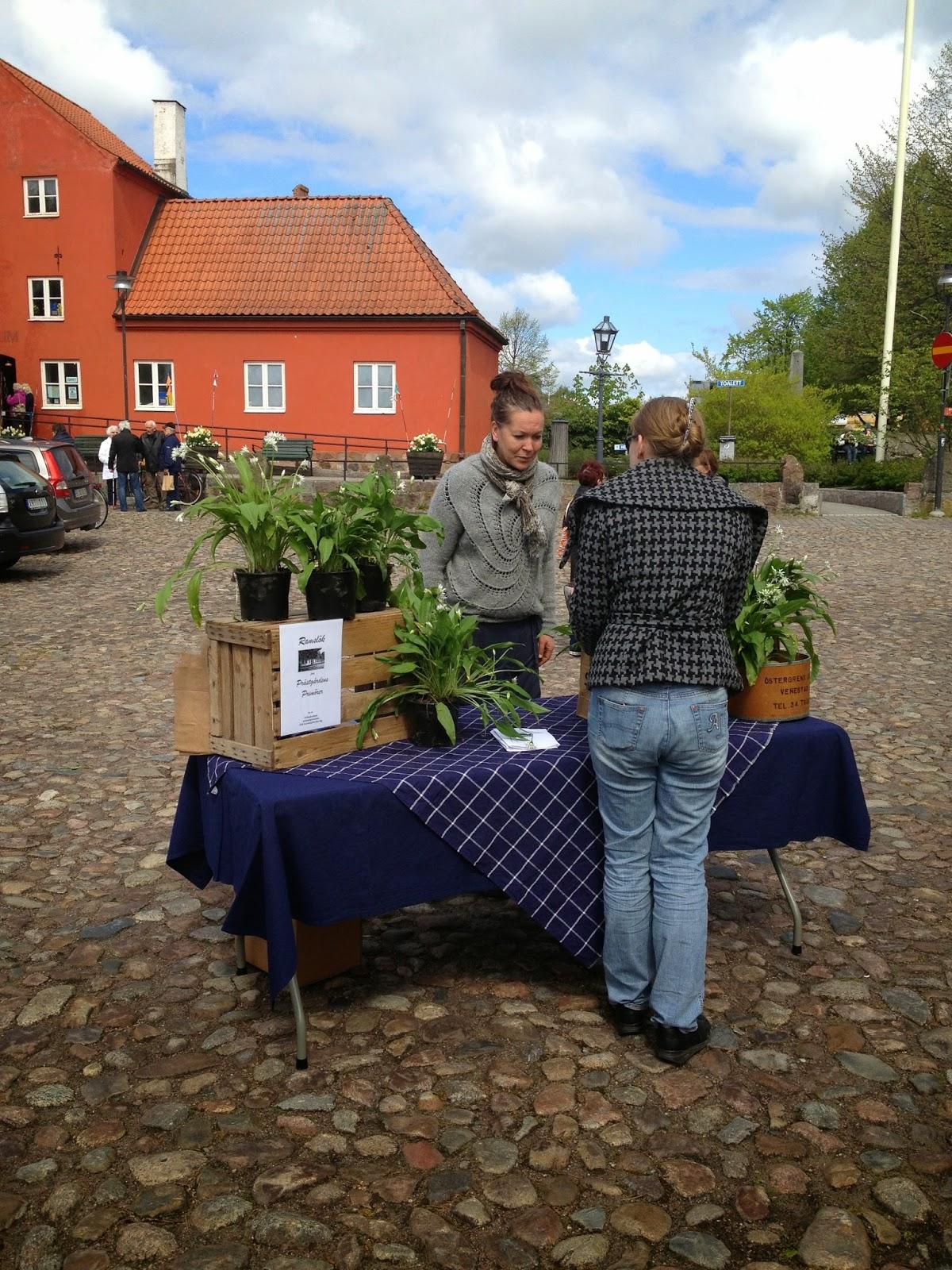 säljer plantor på torget i Åhus