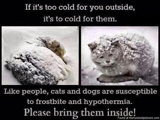 Please, bring them inside!