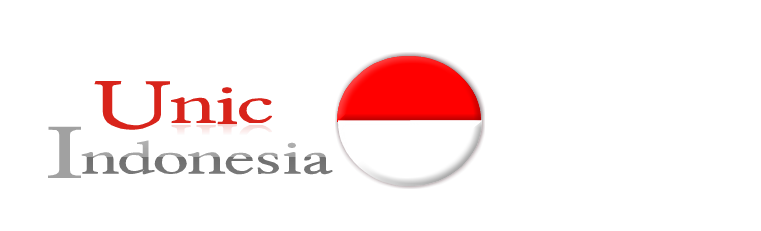 unic indonesia