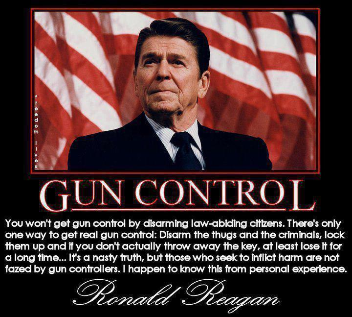 a persuasion speech on why our gun controll laws are not sufficient Sufficient evidence  was not until the 1970s that it began to actively oppose  most gun control attempts as attacks on civil liberties  one of the biggest  loopholes in federal gun control laws is background check provision: only  licensed gun  when a greater number of people in our society own guns,   persuasive essay.