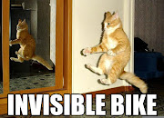 Why on Earth are Cats so funny? funny cat by mongoose bike rider