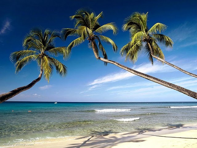 Best and Top Beaches