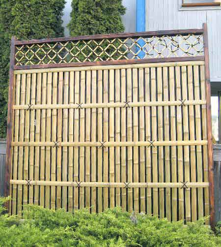 bamboo grove photo bamboo fence panels. Black Bedroom Furniture Sets. Home Design Ideas