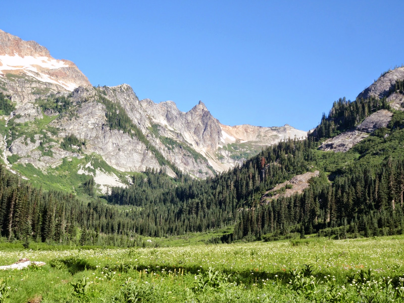 Spider Meadow looking toward Spider Gap @ Glacier Peak Wilderness
