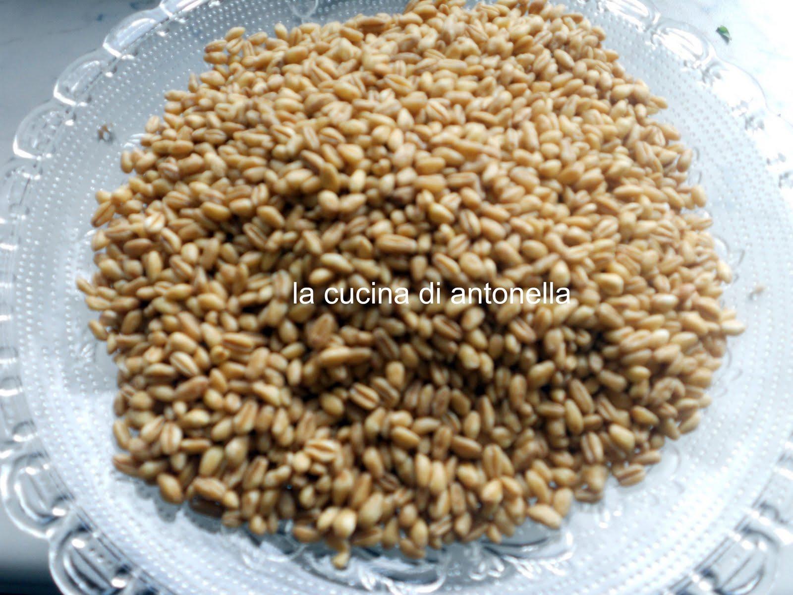 La cucina di antonella insalata di grano verdure e feta - La cucina di antonella ...