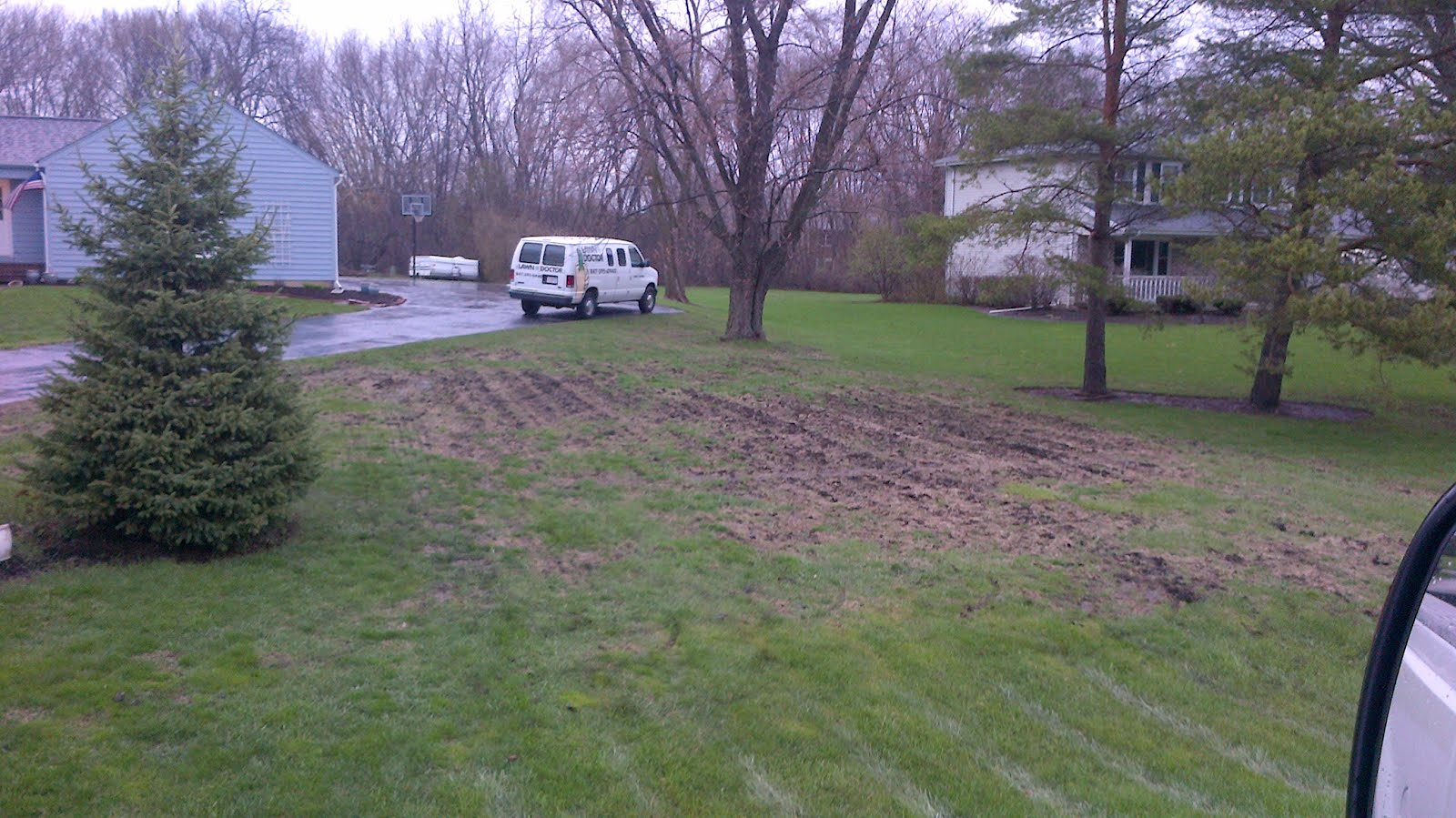 how to prepare lawn for spring seeding