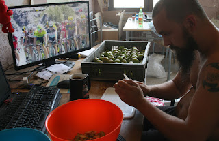Tour de France, and pear processing