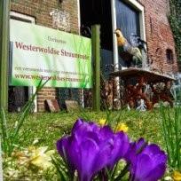 11 , 12 april Westerwolde struunroute