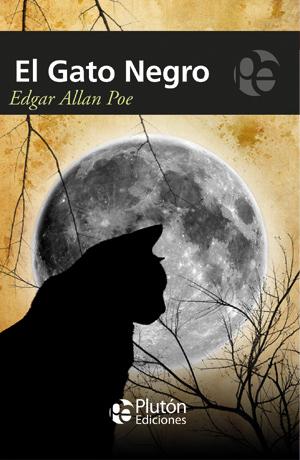Las palabras del silencio gato negro brujer a magia - El gato negro decoracion ...