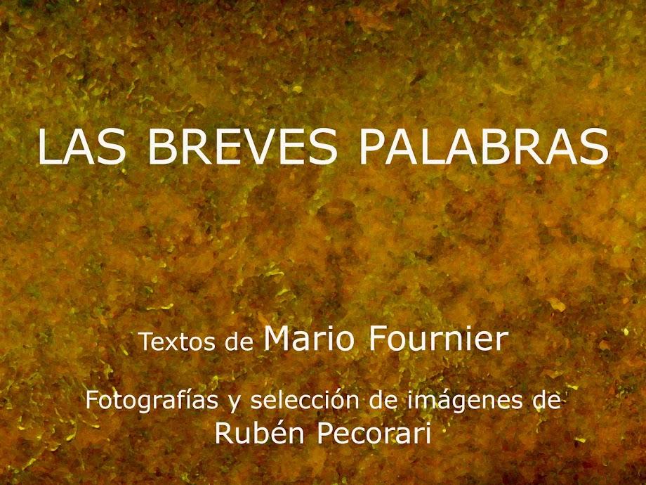 LAS BREVES PALABRAS