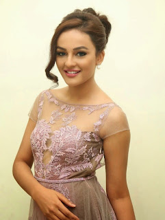 Seerat Kapoor Stills at Tiger Movie Audio Launch 14.jpg