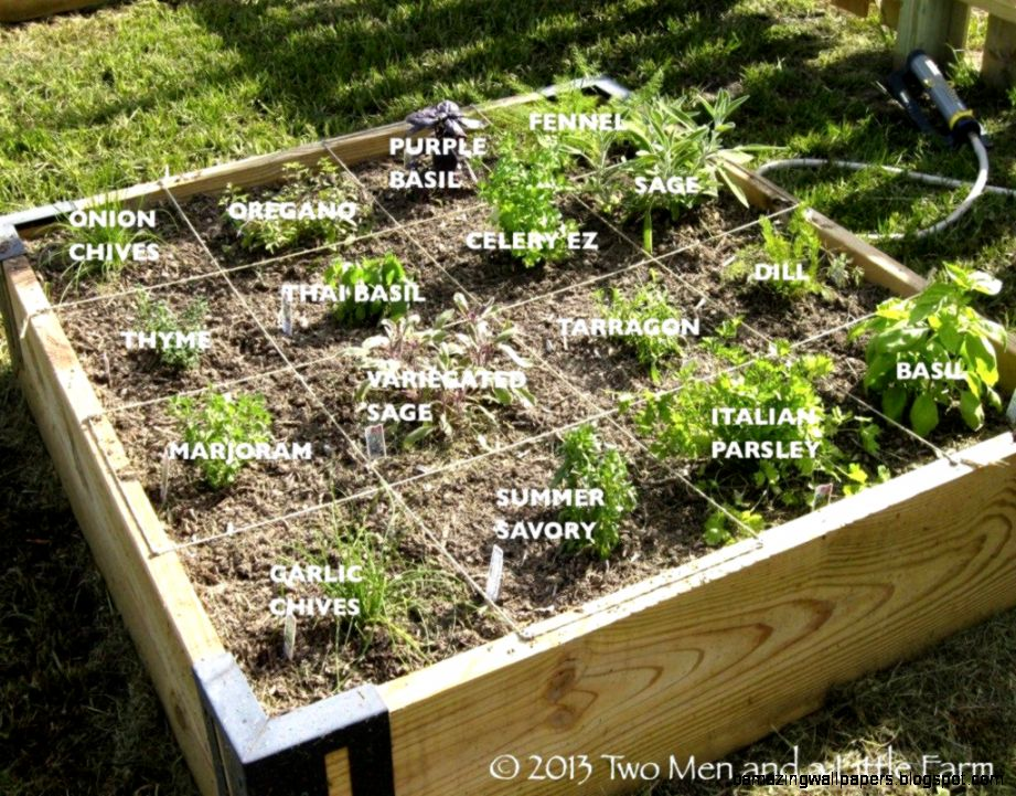 Raised Bed Vegetable Gardening Ideas  The Garden Inspirations