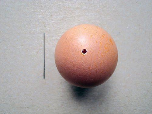 Baby Egg Projec...