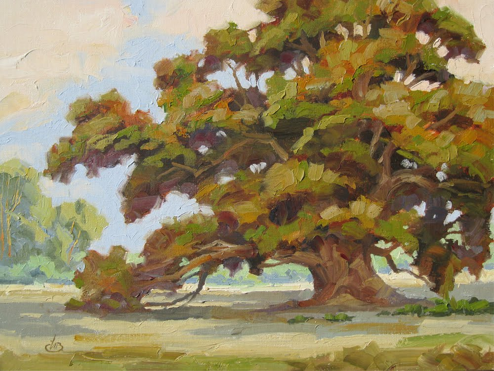 tom brown fine art 12x16 inch oak tree oil painting by
