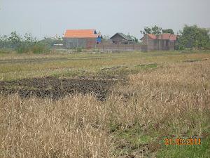 foto tanah kapling