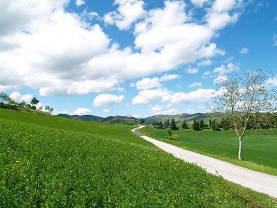 Rocca San Casciano: strada per San Donnino in primavera