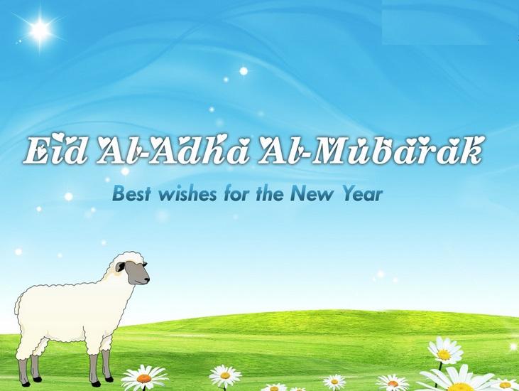 Fantastic Bakra Eid Eid Al-Fitr Greeting - bakri%2Beid%2Bmubarak%2Bimages%2B-%2BEid%2Bul%2Badha%2Bmubarak%2Bimages%2B3  Pic_5566 .jpg