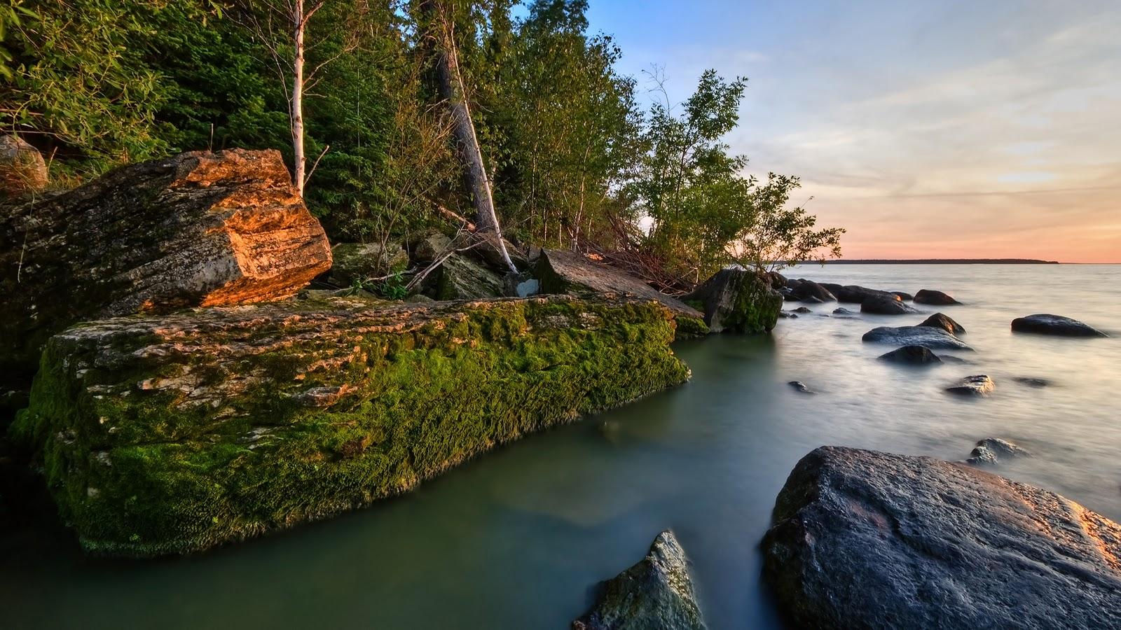 http://3.bp.blogspot.com/-339j_2knp4k/TsvIKSQki2I/AAAAAAAAK-8/vMhaAPdBX0U/s1600/nature+wallpaper+hd+1080ps.jpg