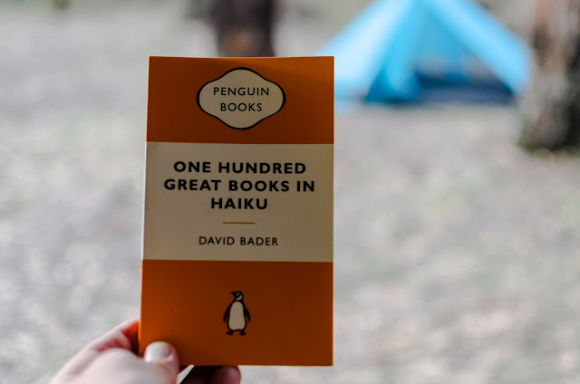 one hundred great books in haiku by david bader