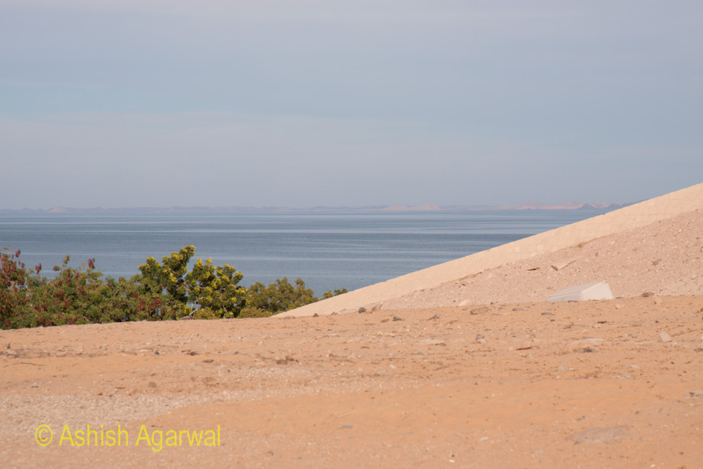 Edge of the hillock and trees with a view of the water of Lake Nasser in the background at the Abu Simbel temple