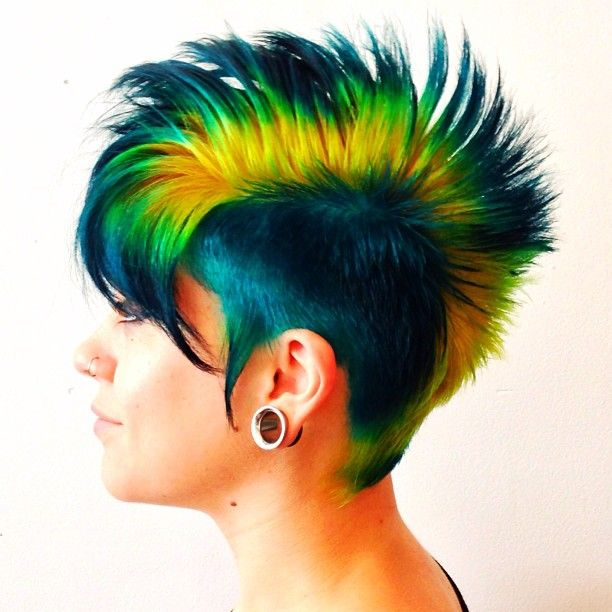 Parrot Hairstyles Images And Video Tutorials The