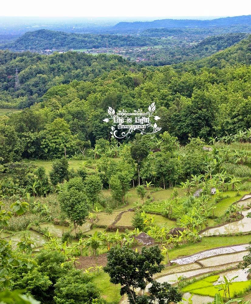 indahnya Mbucu Hill
