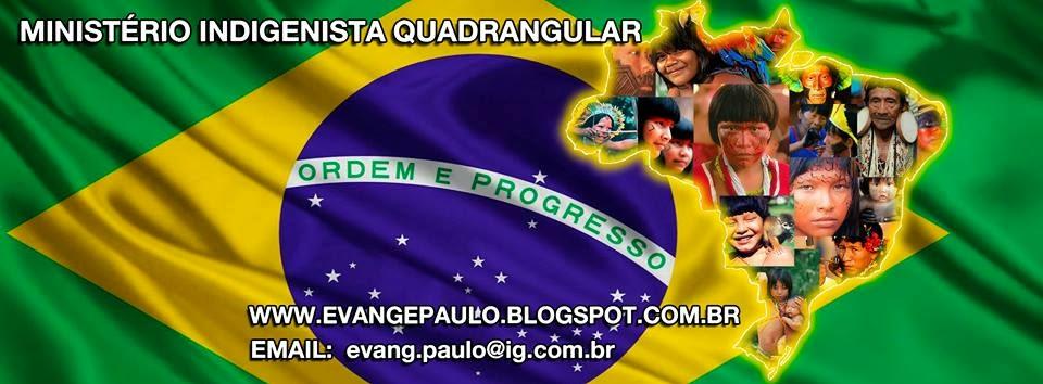 Povos Brasileiros