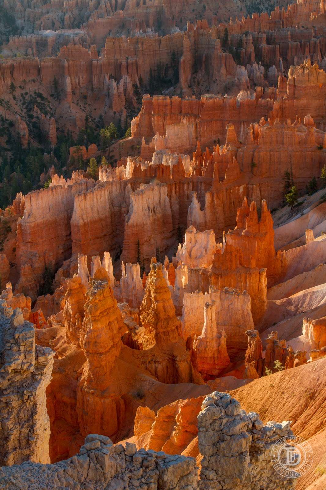 bryce canyon national park senior personals Lodging and services are available on the gorgeous east side of zion national park, where guests are close to zion national park (12 miles), bryce canyon national park (60 miles), cedar breaks national monument (45 miles), coral pink sand dunes (12 miles), and the north rim of the grand canyon (85 miles.
