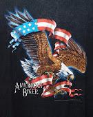 American Biker 3d