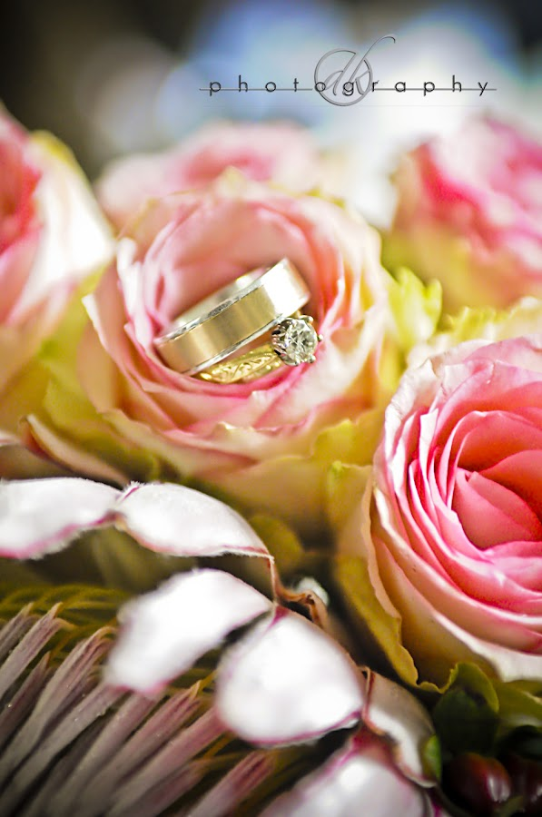 DK Photography No46 David & Nordely's DIY Wedding {Stellenbosch to Franschhoek}  Cape Town Wedding photographer