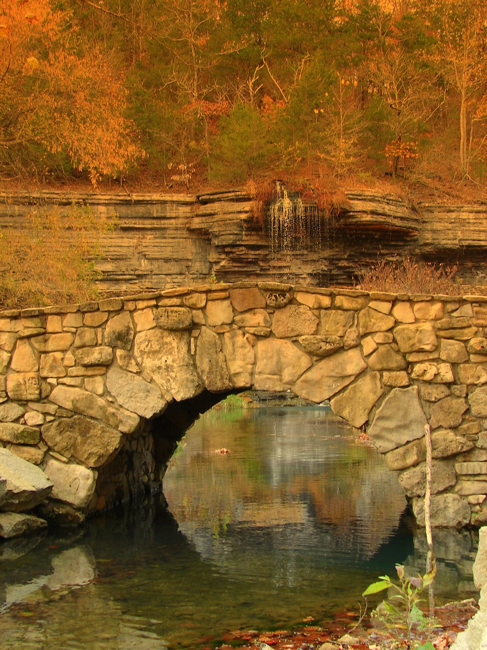 Expeditions by tricia dogwood canyon autumn transitions for Dogwood canyon
