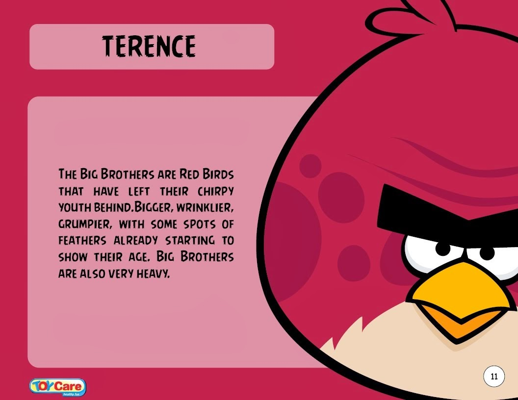 angry birds go terence - photo #11