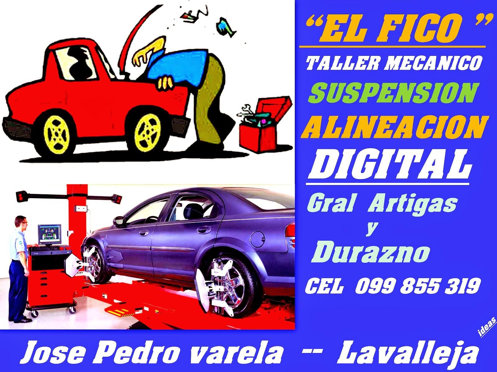 """TALLER """"EL FICO """""""""""