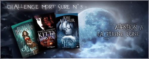 http://carnetdunefildeferiste.blogspot.fr/search/label/Attention%20%C3%A0%20la%20pleine%20lune