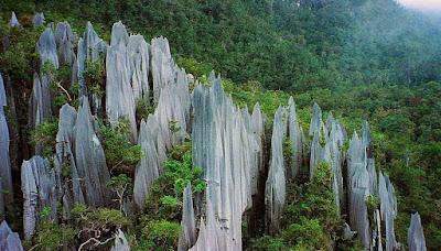 Os pináculos do Monte Mulu – Malásia