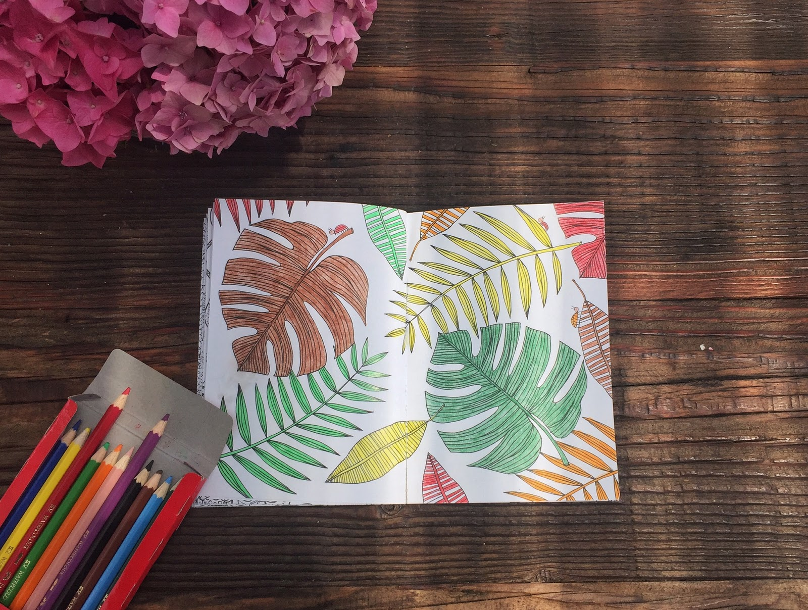 The coloring book of mindfulness - Everyday Since The Book Arrived I Ve Spent Some Blissful Moments Colouring Away It Has Brought Back Fond Memories Of My Childhood A More Carefree Time