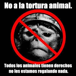 ¡¡ No al Maltrato Animal !!