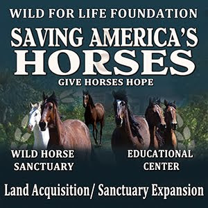 Equine Sanctuary Mission