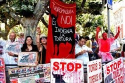 (28/09/011) FIN de las corridas de toros en Cataluña!!