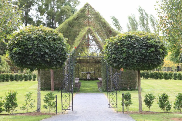 A NZ Church Made From Trees
