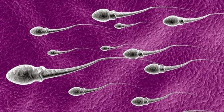 gambar sperma lagi pada muncrat