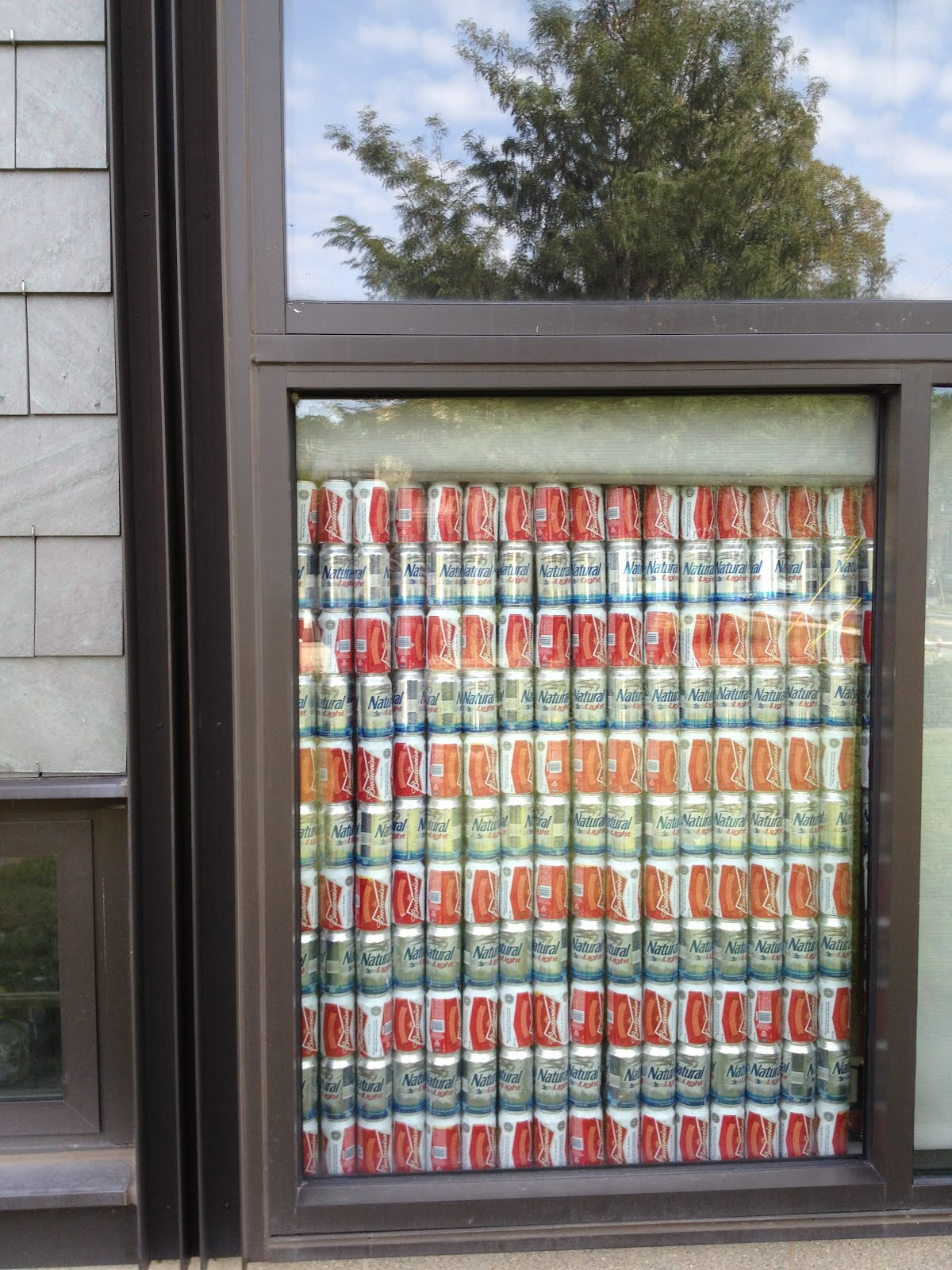 Damn arbor classy diy privacy screen for Privacy window screen