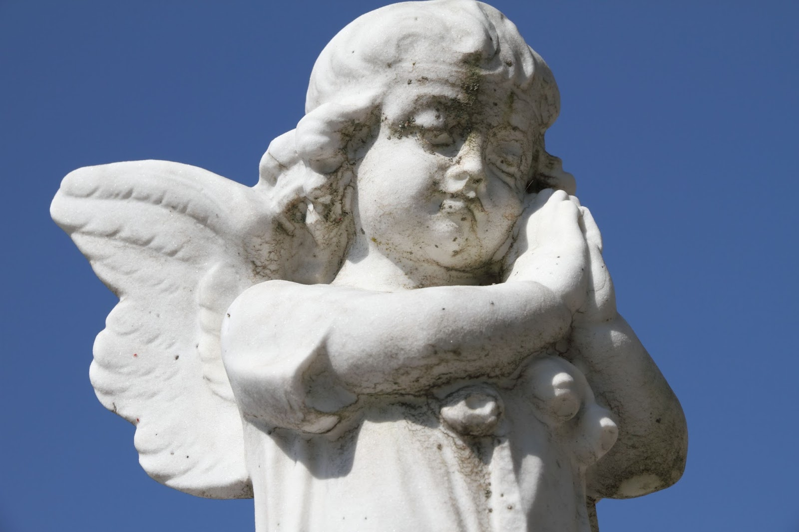 Cute baby angel praying