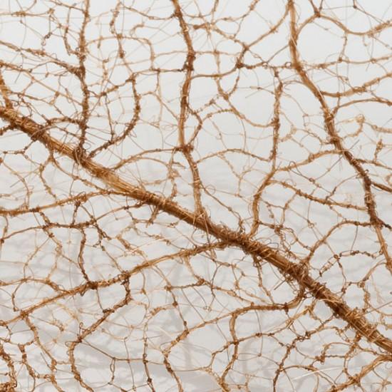 لوحات فنية لأوراق الشجر وبعض الأعمال الفنية من شعر  Human-hair-leaves2-550x550