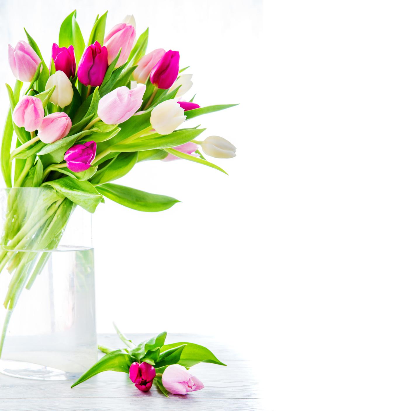 BANCO DE IMÁGENES: 20 postales con flores para escribir tus propios ...