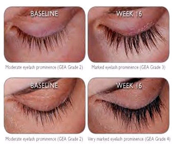 How To Make Your Eyelashes Longer | Tips Webs