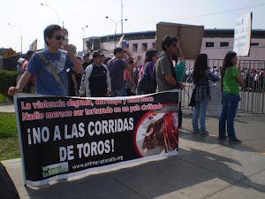 DOMINGO 13 DE NOV. 2011 EN ACHO