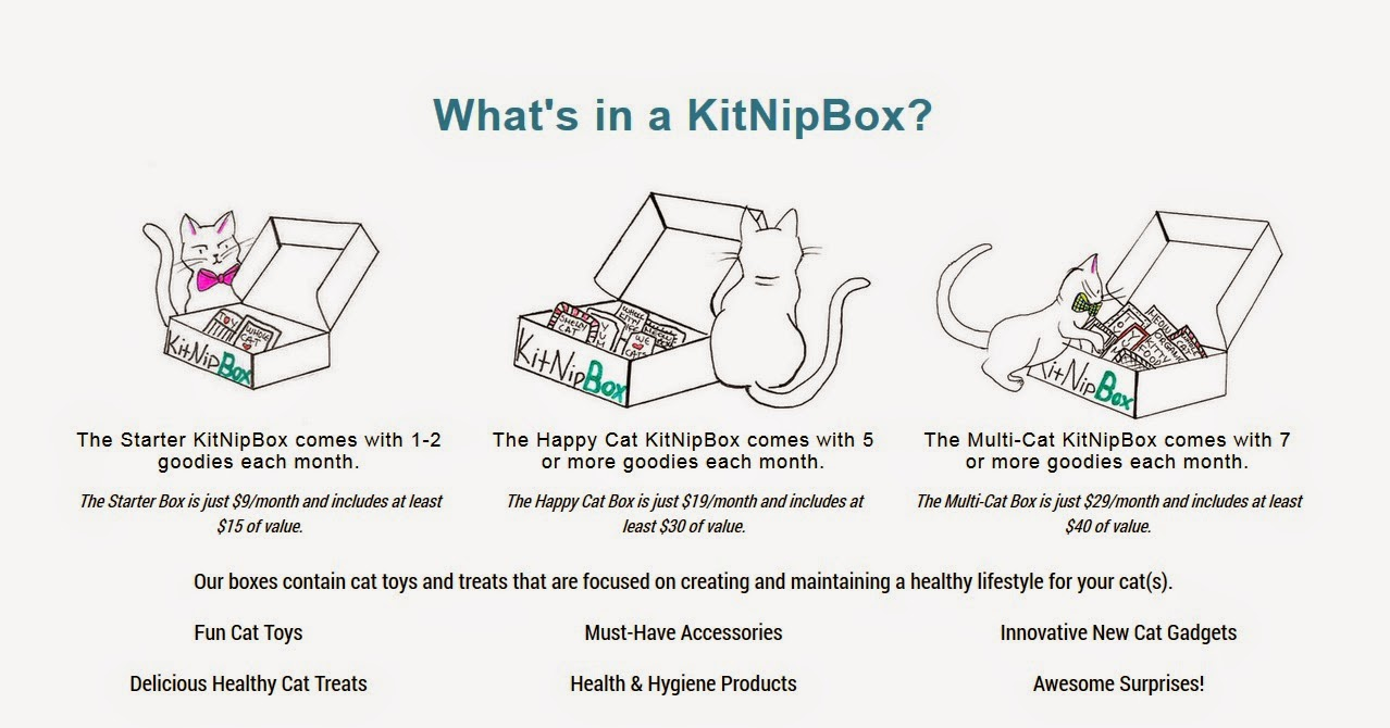 https://www.kitnipbox.com