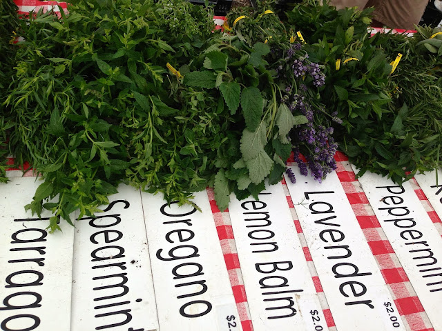 herbs_farmers_market_spearmint_oregano_lemon_balm_lavender_peppermint