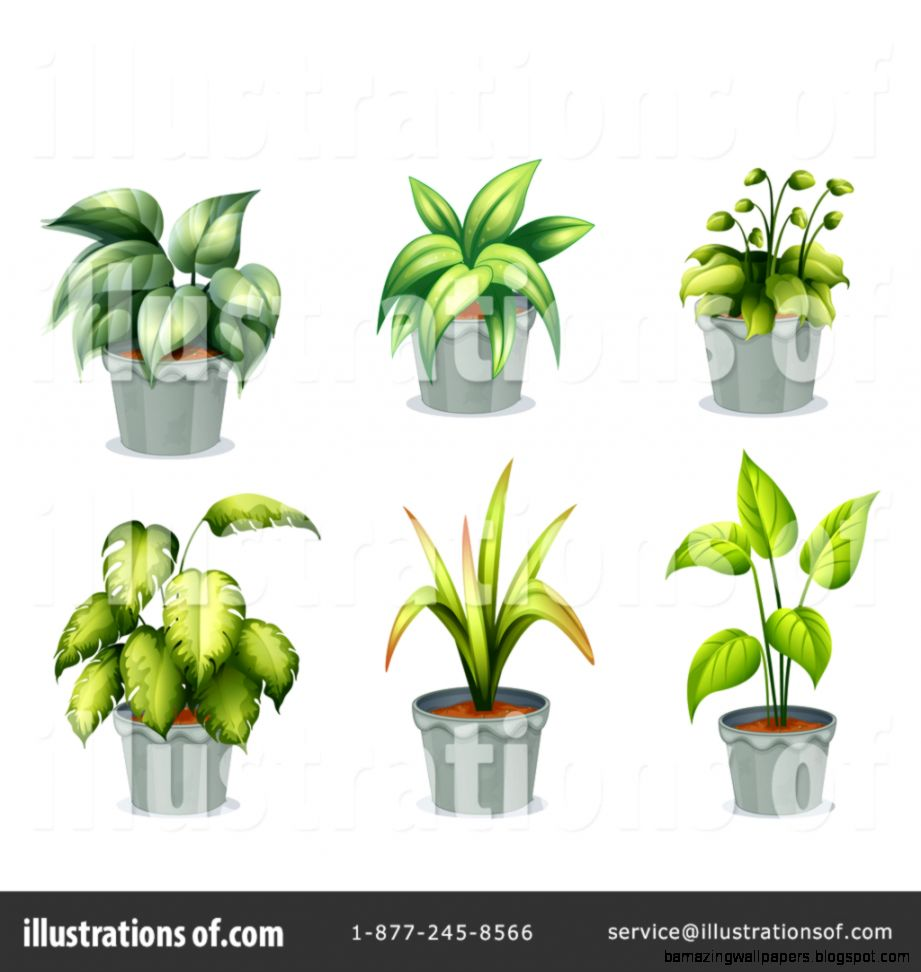House Plant Clipart 1239831   Illustration by colematt